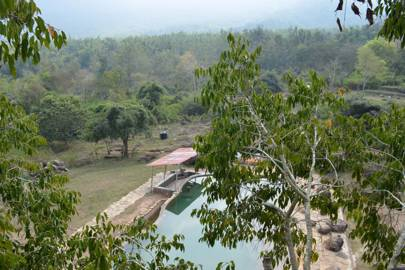 Jungle Retreat, India