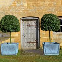 Frame A Door with Standard Bay Trees | Country Garden Design Ideas
