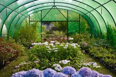 February House & Garden
