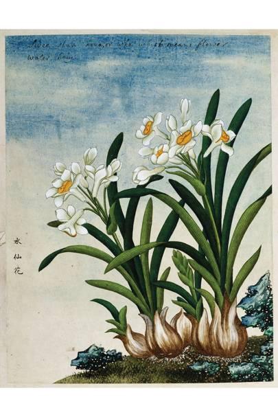19th-century Chinese watercolour