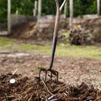 Compost - An English Flower Garden