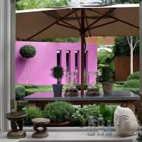 Vivid Pink Wall