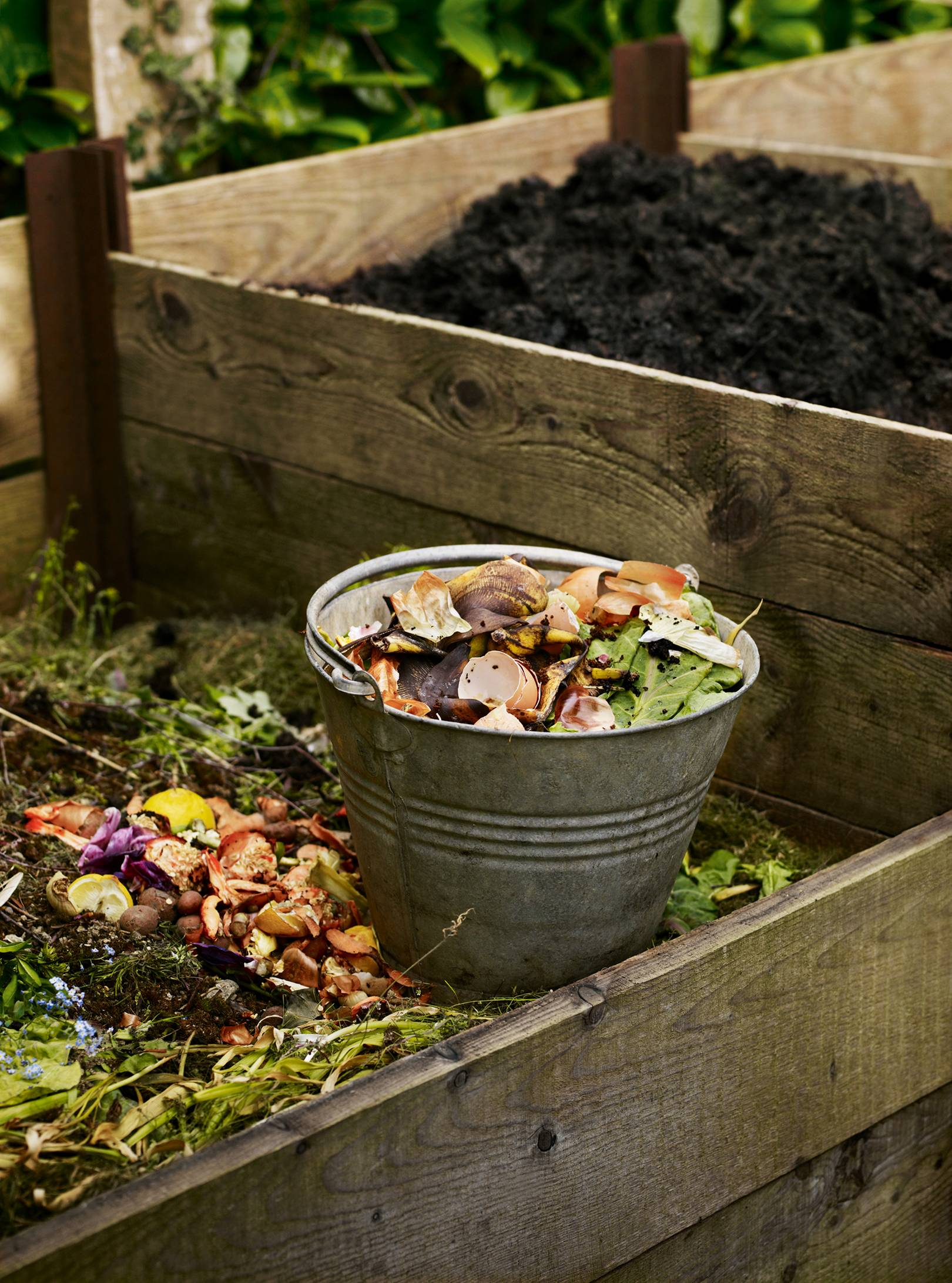 How to make the perfect compost heap to help your plants flourish