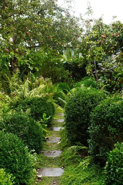 Garden Path - Bunny Guinness' Cambridgeshire Garden