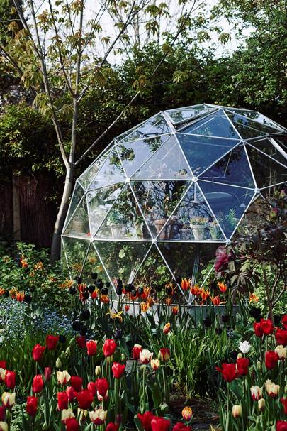 Dome Greenhouse with Succulents