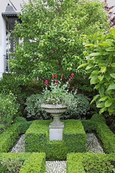 London Villa: Box Hedges