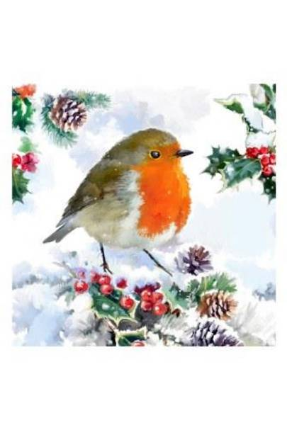 Robin and Foliage