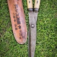 Japanese shears