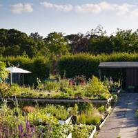 January House & Garden