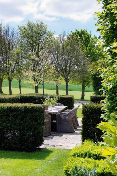 Yew Hedges