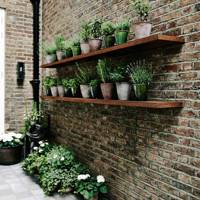 Roof Garden Shelves | Small Garden Ideas