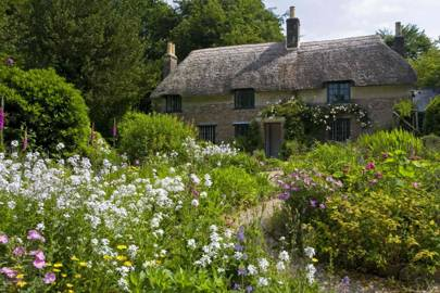 Thomas Hardy: Hardy's Cottage