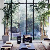 Design ideas: the indoor garden, p91