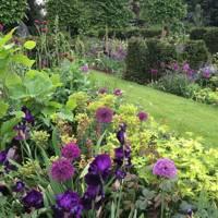Luscious Planting