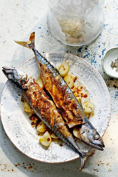 Easy Fish & Seafood Recipes | Salmon, Prawn, Mussels
