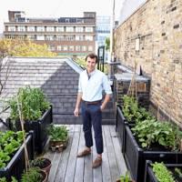 small city garden tips