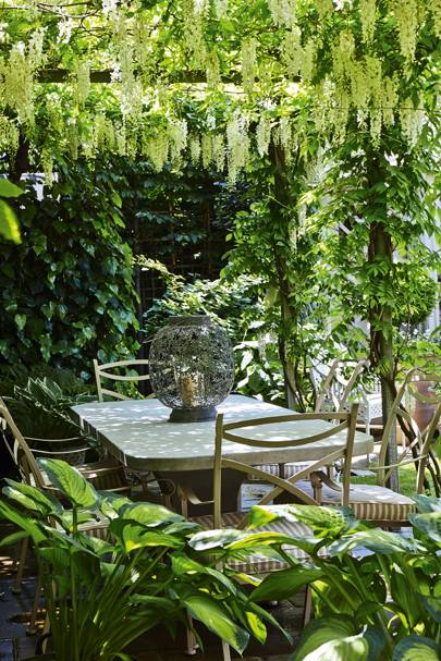 Pergola Perfection