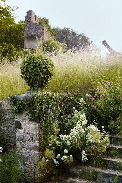 Old Steps | Garden Ideas & Inspiration
