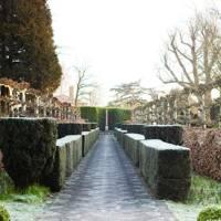 Elizabeth Tudor Walk