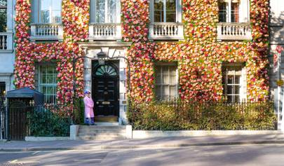Don't have a ticket to Chelsea Flower Show? Head to these events instead