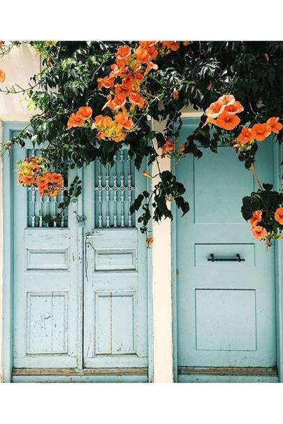 Greek Flower Door - Door J'adore