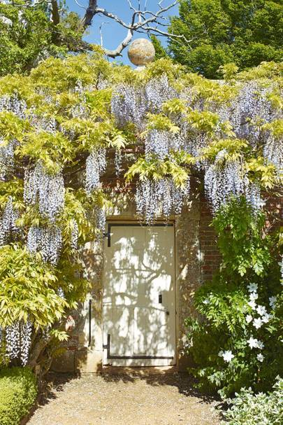 Wisteria-covered Walled Garden at Bowood