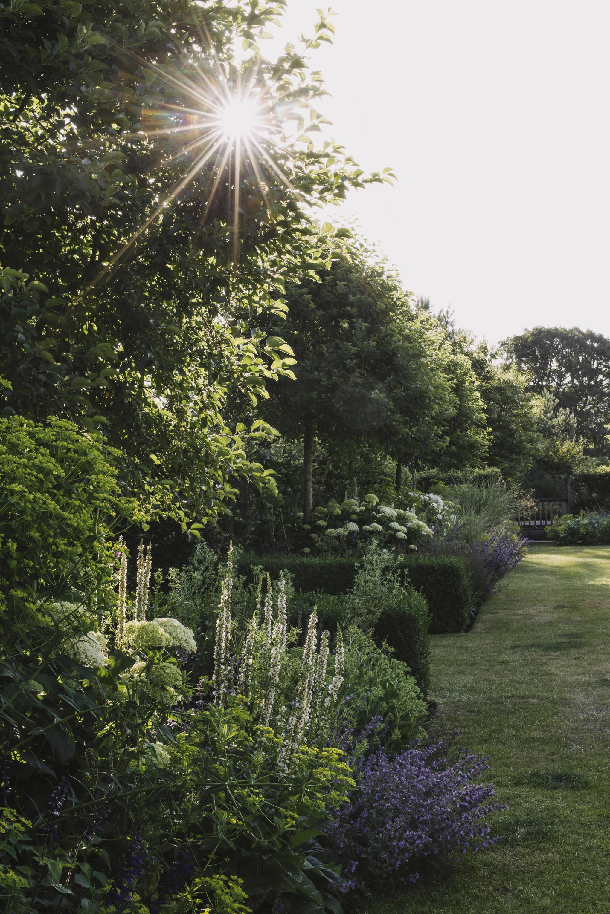 Restoring beauty and order to the 24-acre garden of North Rode Manor