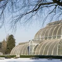 Kew Gardens Gift Membership