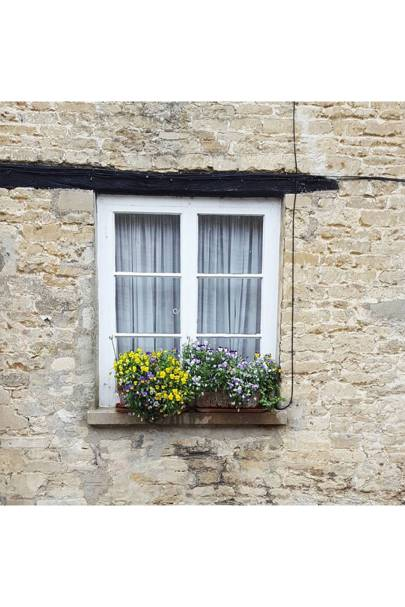 Country Cottage Windowsill