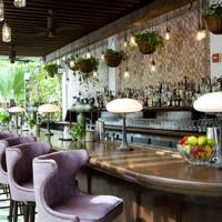 Miami Beach House: Bar