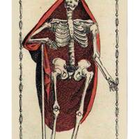 Death from The Ancient Tarot of Lombardy