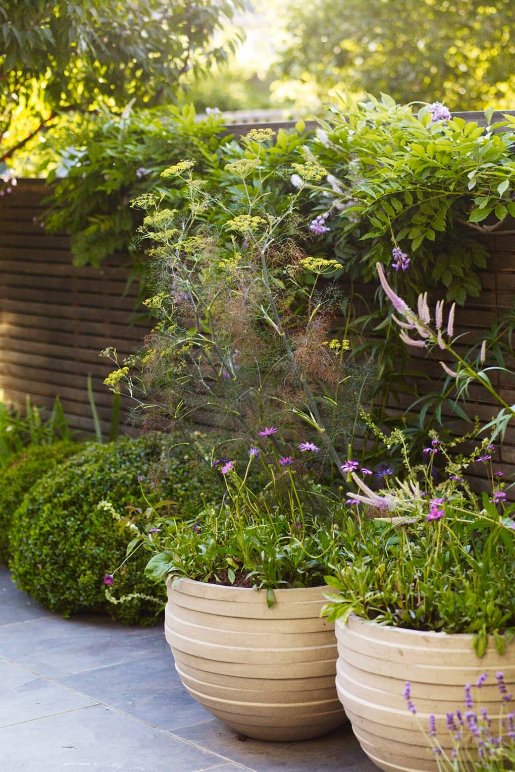 Small Urban Family Garden of Garden Designer Marcus Barnett | House ...