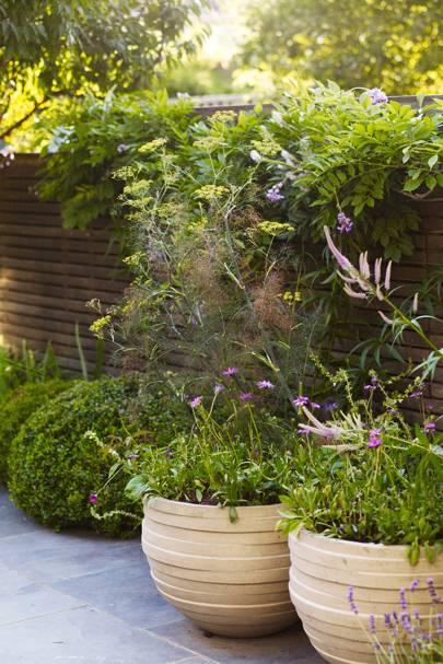 Clay Pots - Urban Family Garden | Designers' Gardens