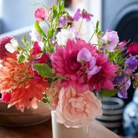 Pentreath & Hall - Flowers