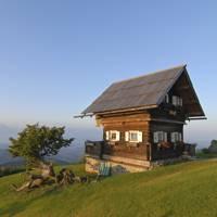 Amazing Austrian