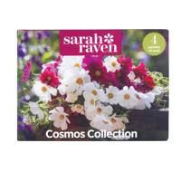 Sarah Raven Cosmos Seed Tin Collection