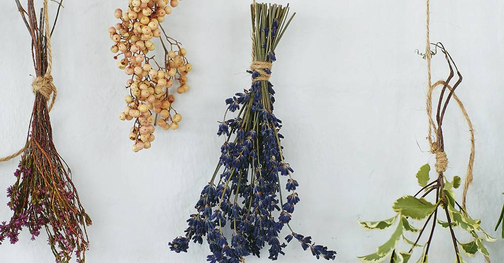 How to dry flowers and decorate with them