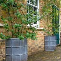 Ribbed Planters for Climbers