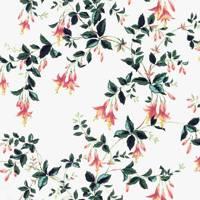 Fuchsia by Twigs