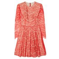 The Lace Little Dress