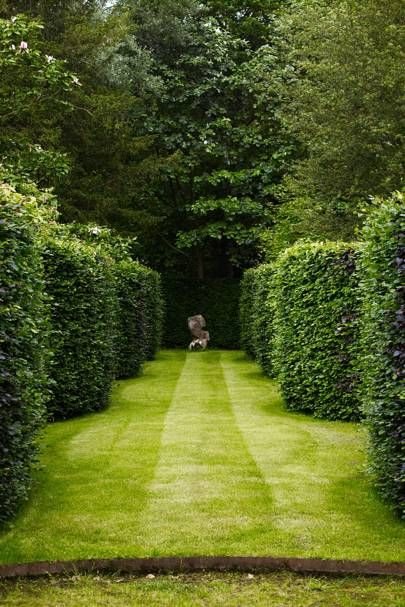 Serpentine Hedges
