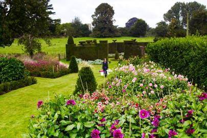 Lawn - An English Flower Garden
