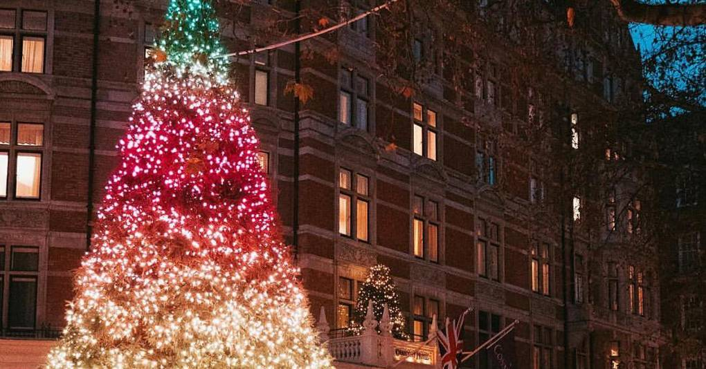 The best Christmas trees on show in London