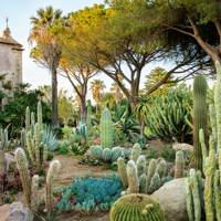A magical garden in Sicily, p222