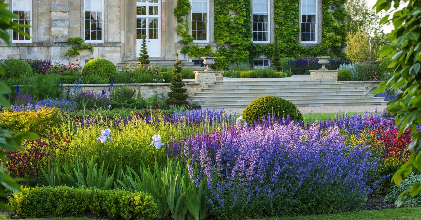 Garden design: the 17 basic elements everyone should know