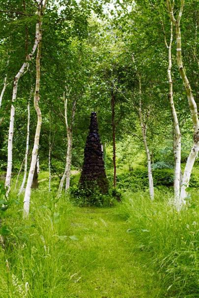 Trees Surround Sculpture
