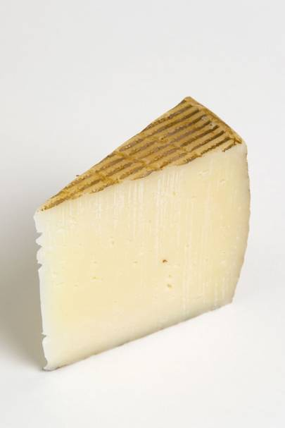 Pasteurised Cheese