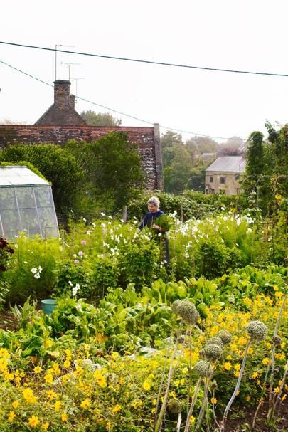 An English Flower Garden