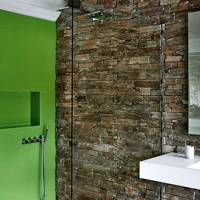 Green Wall in Shower Room