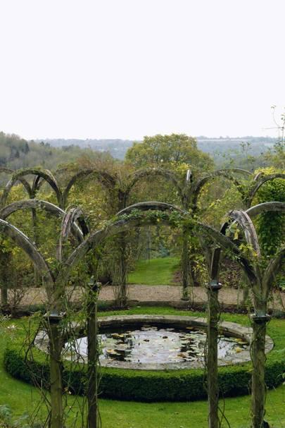 Circular Lily Pond